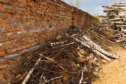 Deforestation, deforestation. Harvesting of wood. A pile, a stack of many sawn pine and birch logs. Destroyed brick wall.