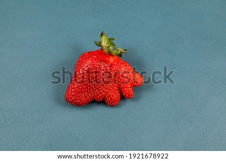 Deformed strawberry abnormal shape on blue background, close-up. Ugly fruits and vegetables can be eaten. Concept - reduction of organic waste. Foto stock ©