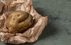 deformed ugly potato with sprouts on parchment paper. Potato seeds on a vegetable.Food waste concept