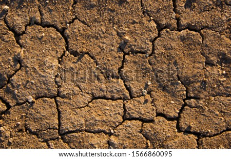 dehydrated brown soil. arid soil. cracked soil background #1566860095