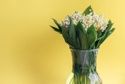 Delicate bouquet of white lilies of the valley in green leaves in a glass vase on a bright yellow background with copy space