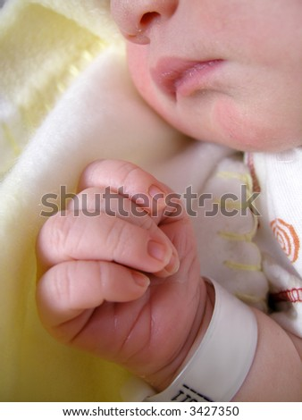 delicate features of a  one day old baby peacefully sleeping