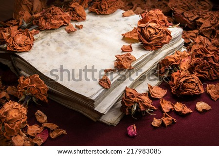 Delicate romantic backdrop in potpourri style. Dry orange roses scattered on  obsolete open yellowed and weathered notebook, on dark burgundy velvet. Close-up view with space for text on greeting card