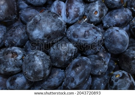 Delicious and fresh purple plums