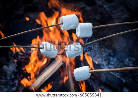 Delicious and sweet marshmallows on stick over the bonfire #605055341