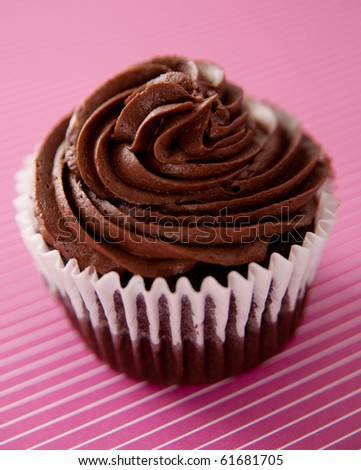 Delicious Chocolate Cupcake
