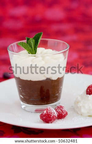 Delicious chocolate dessert with a mint leave