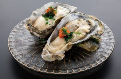delicious fresh seafood raw oyster
