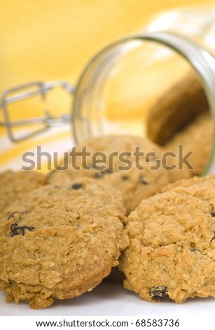 Delicious freshly baked oatmeal raisin cookies spilling out of a glass container with a yellow background. - stock photo
