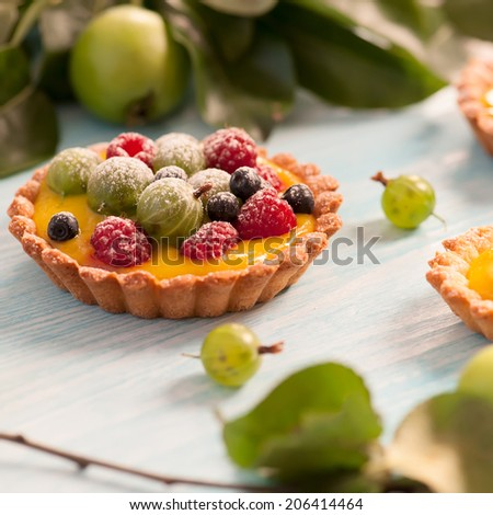 Delicious fruit tart made with raspberries, gooseberries and blueberries. Shallow DOF.