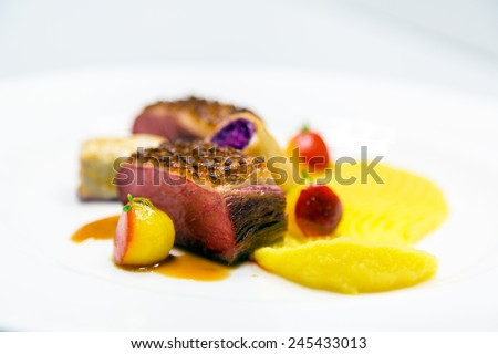 Delicious gourmet food close up