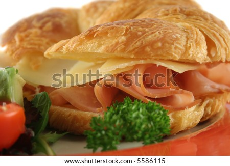 Delicious ham and cheddar cheese croissant with salad.