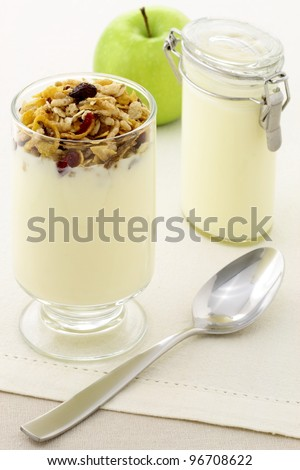 delicious healthy parfait made with creamy yogurt and crunchy granola or muesli
