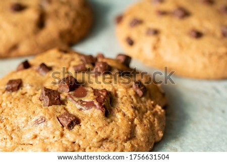 Delicious Homemade Chocolate Chip Cookies. Chocolate chip cookies on plate on wooden background. Warm, golden brown, chocolate chip cookies cooling on baking paper. Natural handmade organic cookies.