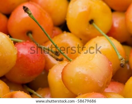 Delicious organic rainier cherries in a bowl
