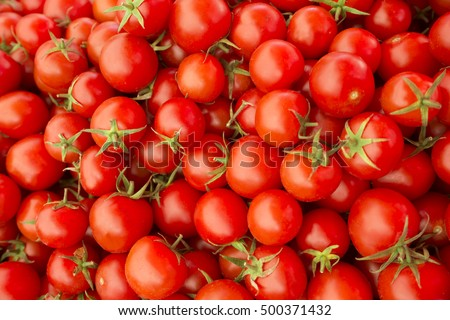 Delicious red tomatoes. A pile of tomatoes. Summer tray market agriculture farm full of organic tomatoes. Fresh tomatoes. It can be used as background. (selective focus) #500371432