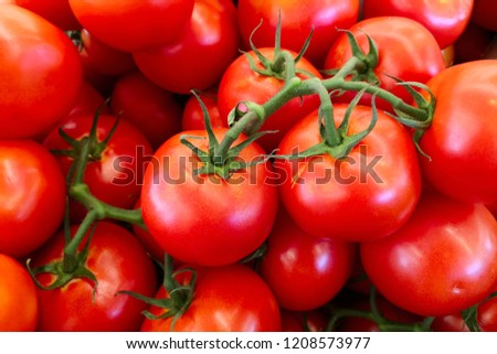 Delicious red tomatoes. Red tomatoes background. Group of tomatoes. Red tomatoes at market #1208573977