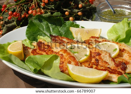 Delicious spiced catfish fillet - stock photo