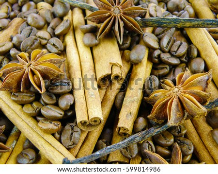 delicious spices background made of vanilla orchid bean, coffee grains, cinnamon bark and anise star pods