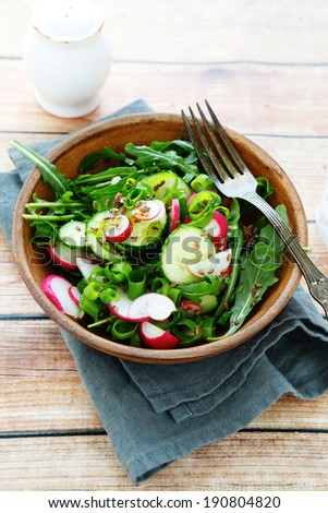 Delicious spring salad with radishes, food closeup - stock photo