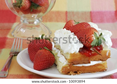 delicious strawberry shortcake on colorful plaid tablecloth - stock photo