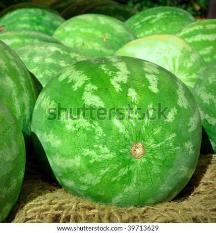 Delicious Watermelon for sale at market - stock photo