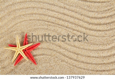 Delightful starfishes on sand