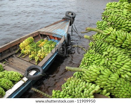 delivery bananas (Musa)  by boat in the Amazon - Musa is one of three genera in the family Musaceae; it includes bananas and plantains