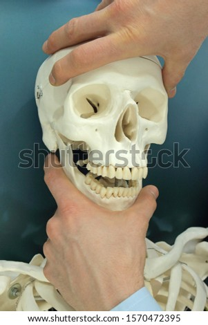 Demonstration of osteopathic techniques on the skull