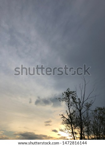 Dense clouds in twilight sky in evening.Image of cloud sky on evening time.Evening sky scene with golden light from the setting sun. Tree silhouette on a cloudy evening sky #1472816144