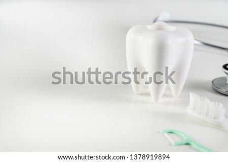 dental  concept Dental model and dental equipment dental hygiene Dentist tools #1378919894