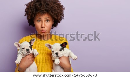 Depressed unhappy woman has problems with two puppies, carries small pedigree dogs, purses lower lip, stands against purple background with blank space on right side, forgets to buy food for animals #1475659673