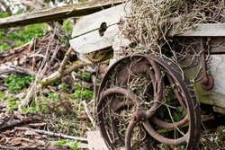 Derelict farm machinery seen heavily weathered and rusted. The ornate metal wheel shows its unusual spoke structure.