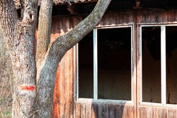 Derelict wooden cabin with with broken windows