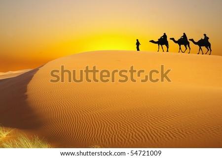 Desert and caravan