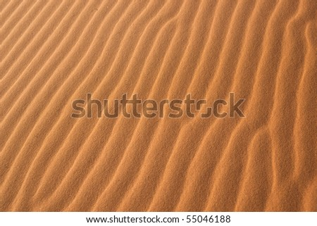 Desert background - stock photo