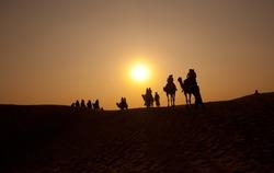 Desert, Camel Ride, Enjoying People