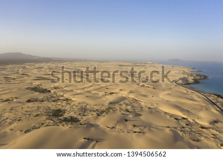Desert coastal aerial with golden yellow sand and blue sea background #1394506562