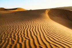 Desert dune desert at sunset