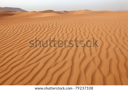 Desert dunes near Dubai, United Arab Emirates
