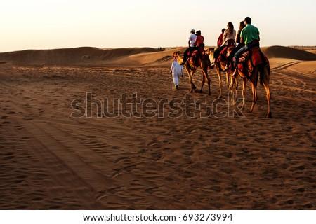 Desert in Dubai, UAE