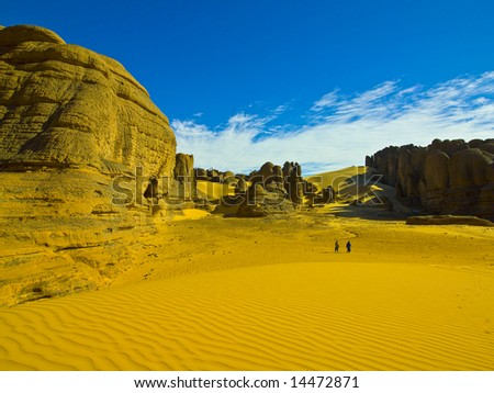 Desert in the algerian sahara