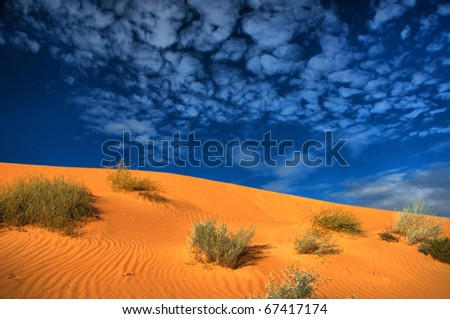 desert in the Centre of Australia, Simpson Desert