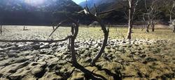 Desert land. Cracks on dry land in the desert.