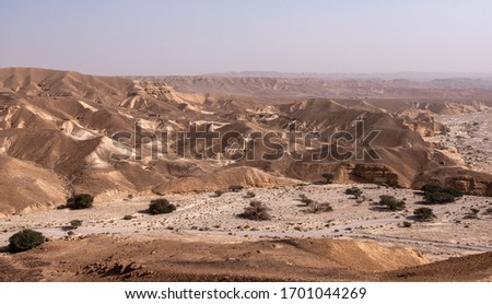 Desert landscape in the remote region of the Negev desert in Israel. Panoramic view of rocky hills and desert rock formations in the Negev desert.