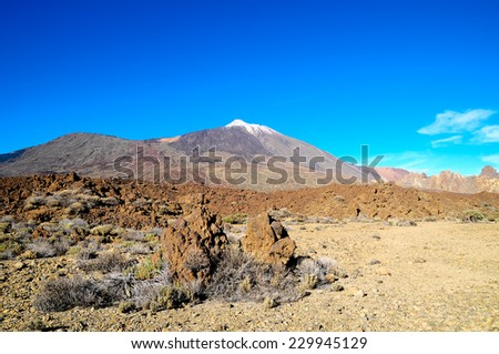 Desert Landscape in Volcan Teide National Park, Tenerife, Canary Island, Spain #229945129