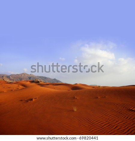 Desert landscape - sand dune - nature background