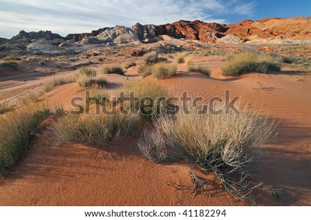 Desert landscape Valley of Fire State Park, Nevada, USA