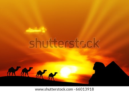 Desert landscape with camels and pyramid