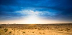 Desert life. Beautiful blue sky in the desert. Great landscape